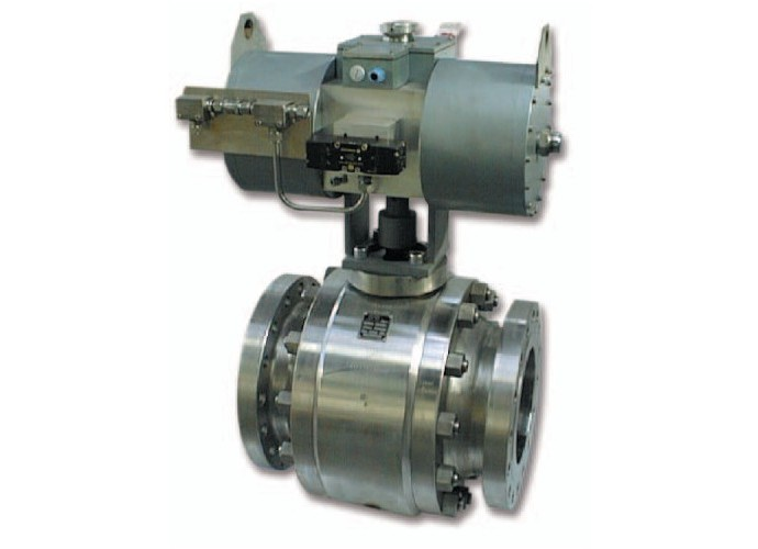 Trunnion ball valve - P Type